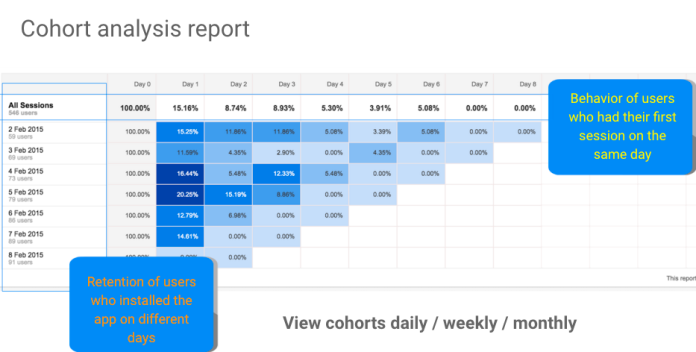 Cohort analysis report